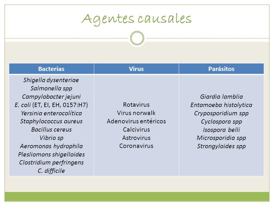 Agentes causales BacteriasVirusParásitos Shigella dysenteriae Salmonella spp Campylobacter jejuni E. coli (ET, EI, EH, 0157:H7) Yersinia enterocolític