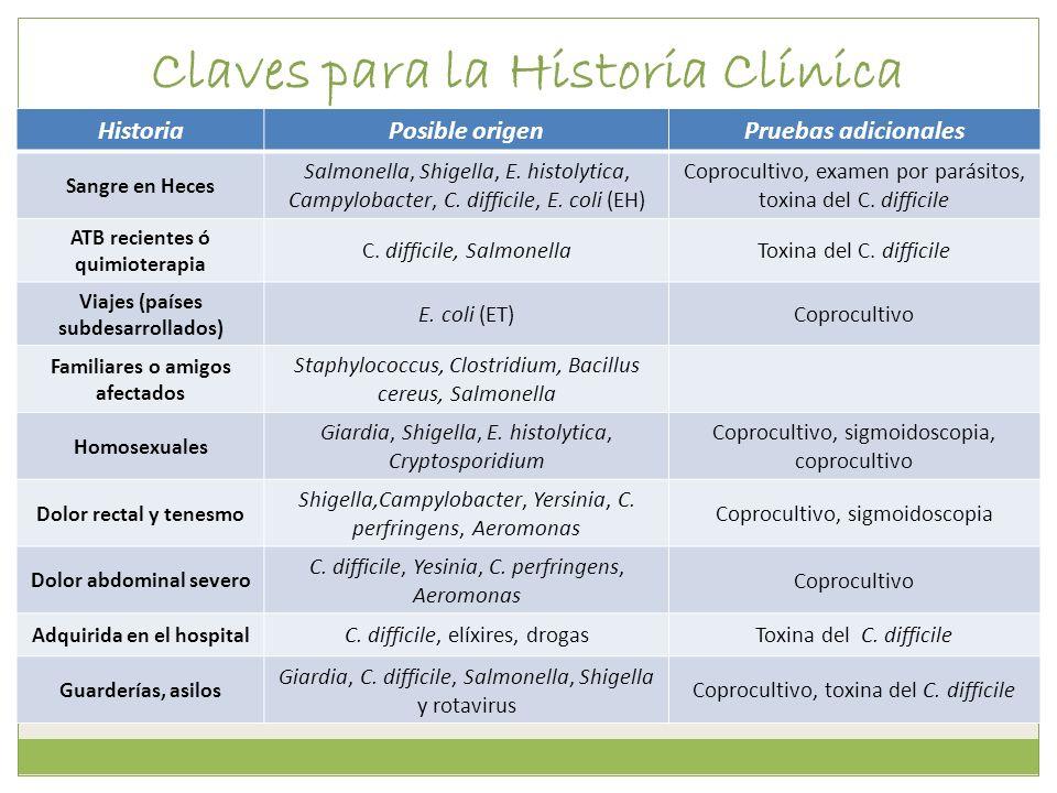 Claves para la Historia Clínica HistoriaPosible origenPruebas adicionales Sangre en Heces Salmonella, Shigella, E. histolytica, Campylobacter, C. diff