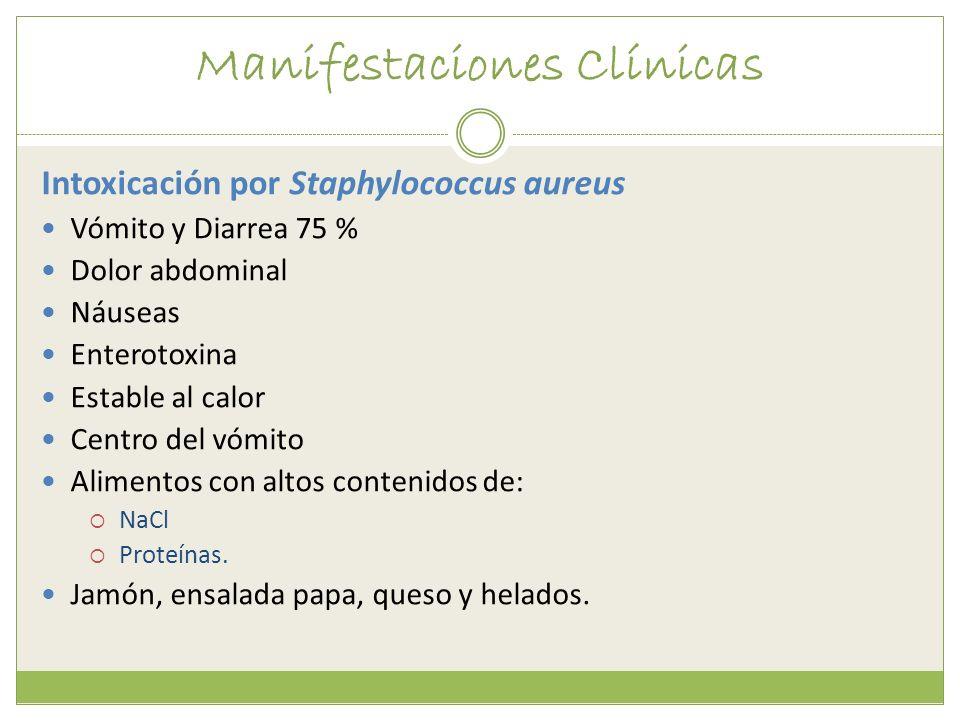 Manifestaciones Clínicas Intoxicación por Staphylococcus aureus Vómito y Diarrea 75 % Dolor abdominal Náuseas Enterotoxina Estable al calor Centro del