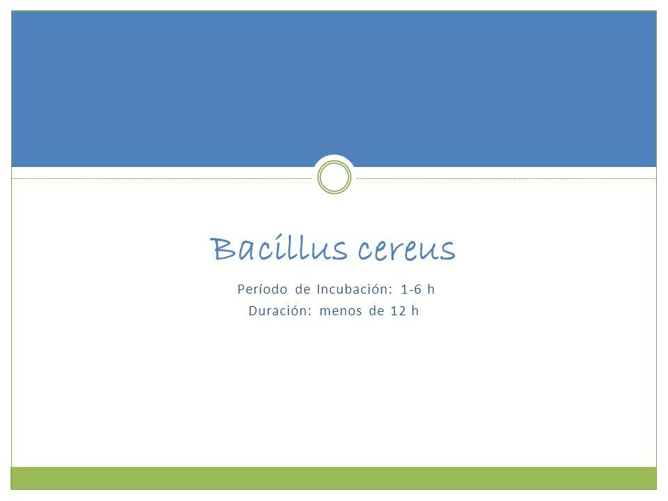 Período de Incubación: 1-6 h Duración: menos de 12 h Bacillus cereus