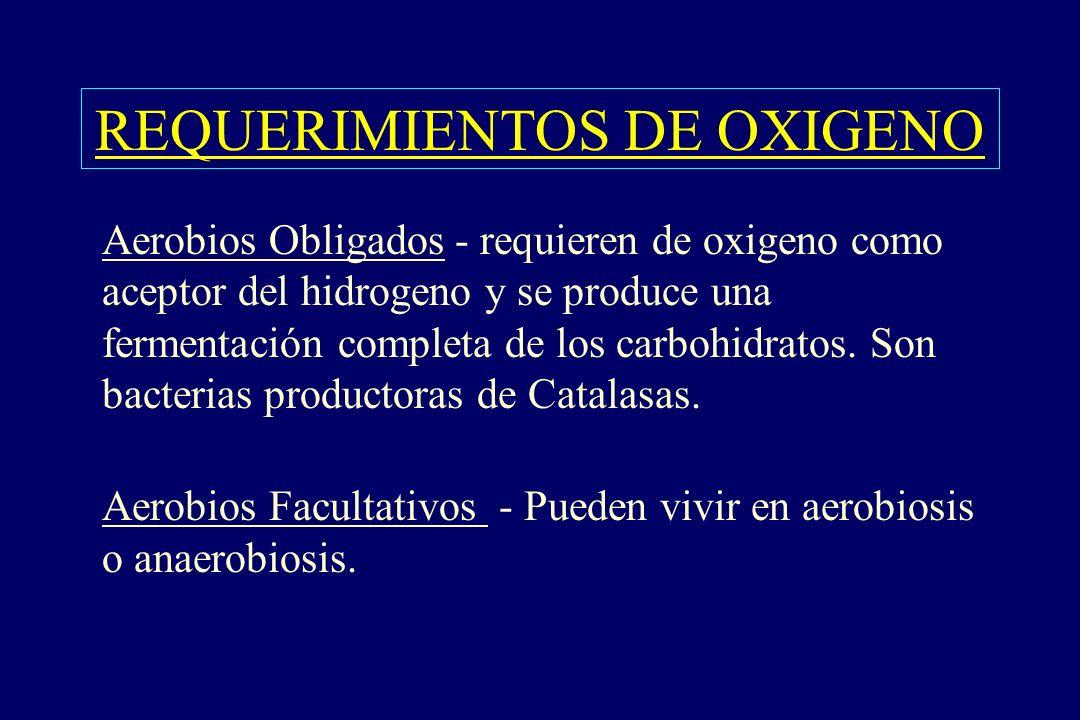 REQUERIMIENTOS DE OXIGENO §Aerobios Obligados - requieren de oxigeno como aceptor del hidrogeno y se produce una fermentación completa de los carbohid