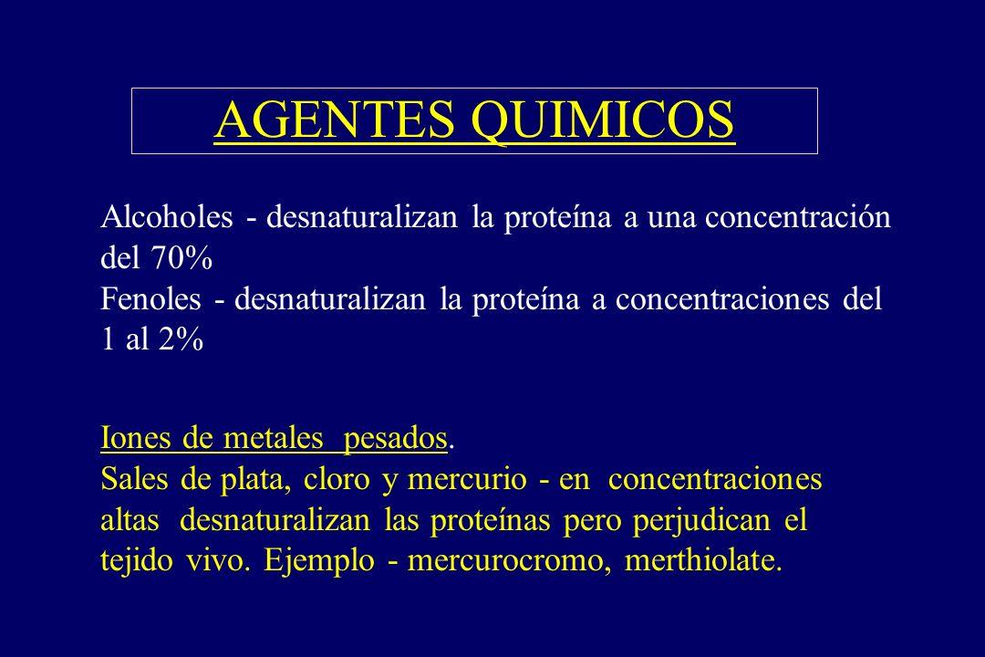 AGENTES QUIMICOS §Alcoholes - desnaturalizan la proteína a una concentración del 70% Fenoles - desnaturalizan la proteína a concentraciones del 1 al 2