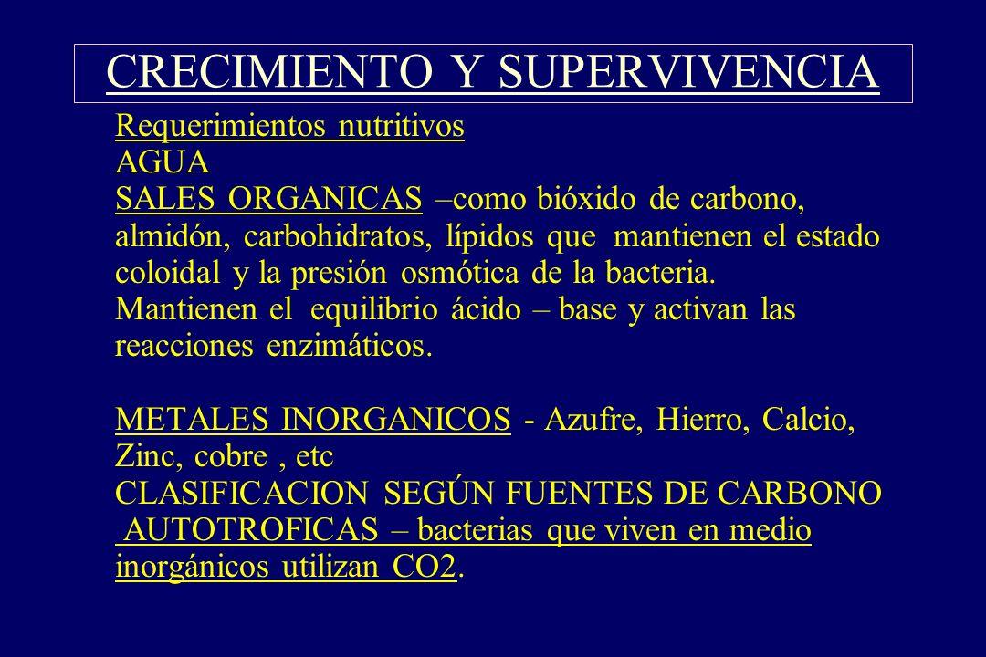§Requerimientos nutritivos AGUA SALES ORGANICAS –como bióxido de carbono, almidón, carbohidratos, lípidos que mantienen el estado coloidal y la presió