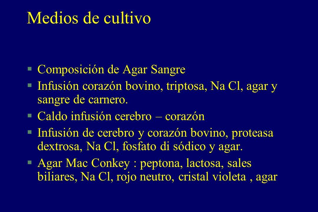 Medios de cultivo §Composición de Agar Sangre §Infusión corazón bovino, triptosa, Na Cl, agar y sangre de carnero. §Caldo infusión cerebro – corazón §