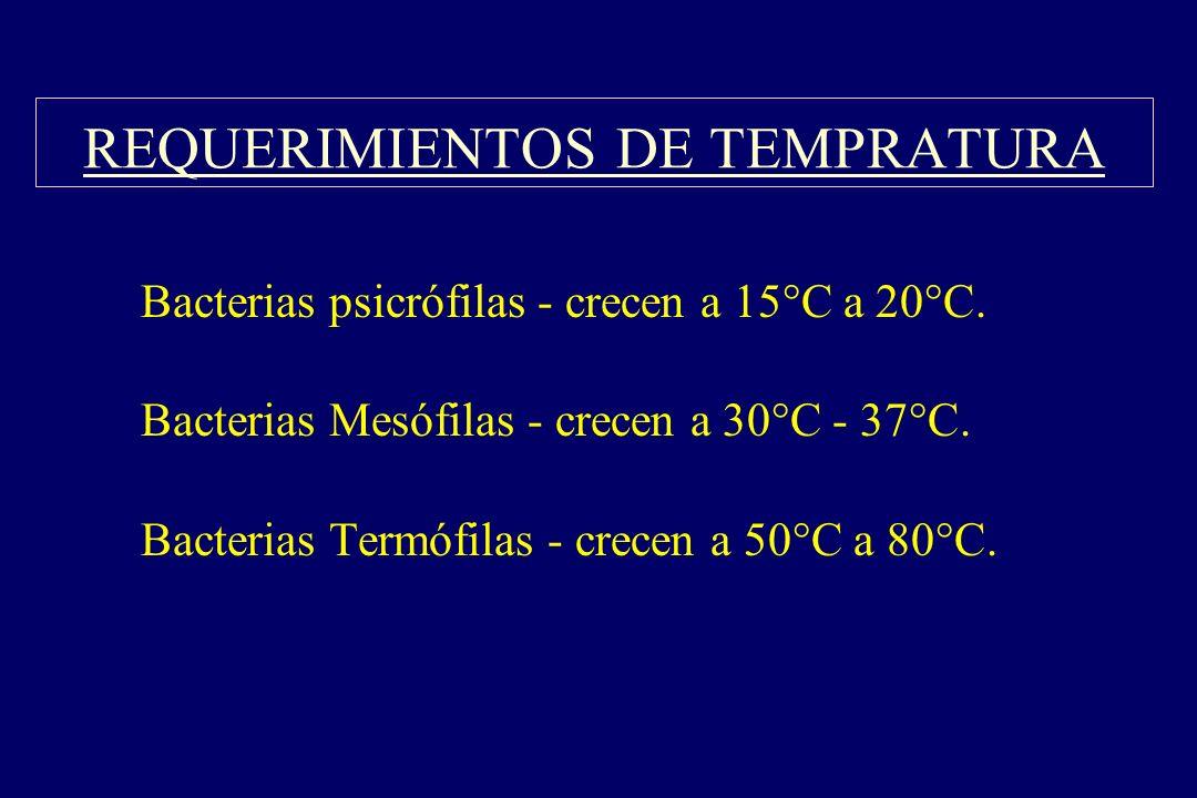 REQUERIMIENTOS DE TEMPRATURA §Bacterias psicrófilas - crecen a 15°C a 20°C. §Bacterias Mesófilas - crecen a 30°C - 37°C. §Bacterias Termófilas - crece
