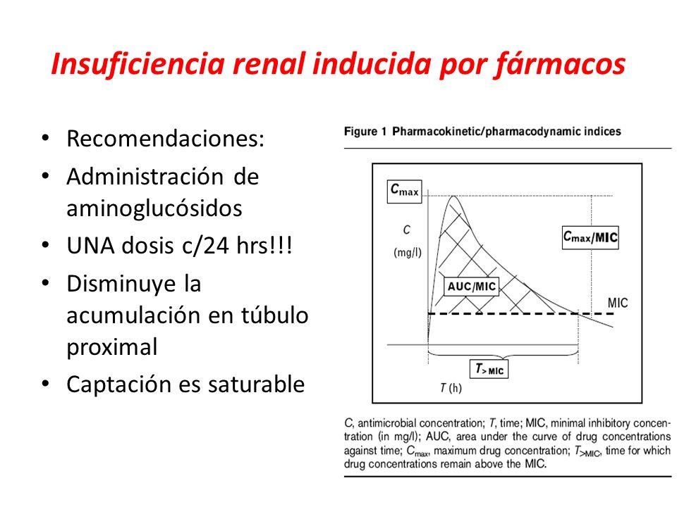 Insuficiencia renal inducida por fármacos Recomendaciones: Administración de aminoglucósidos UNA dosis c/24 hrs!!! Disminuye la acumulación en túbulo