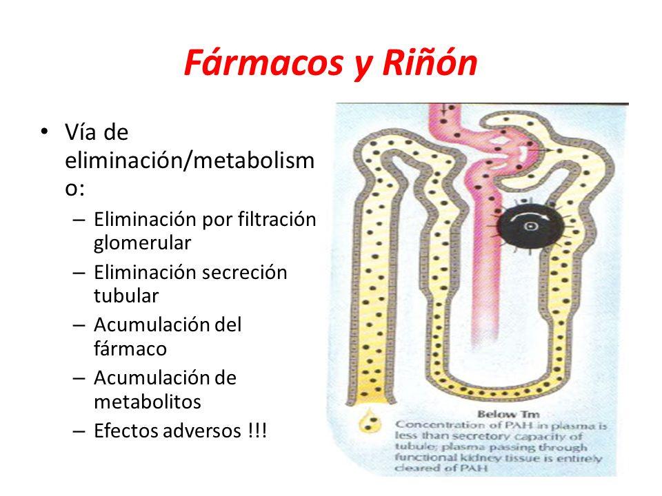 Fármacos y Riñón Vía de eliminación/metabolism o: – Eliminación por filtración glomerular – Eliminación secreción tubular – Acumulación del fármaco –