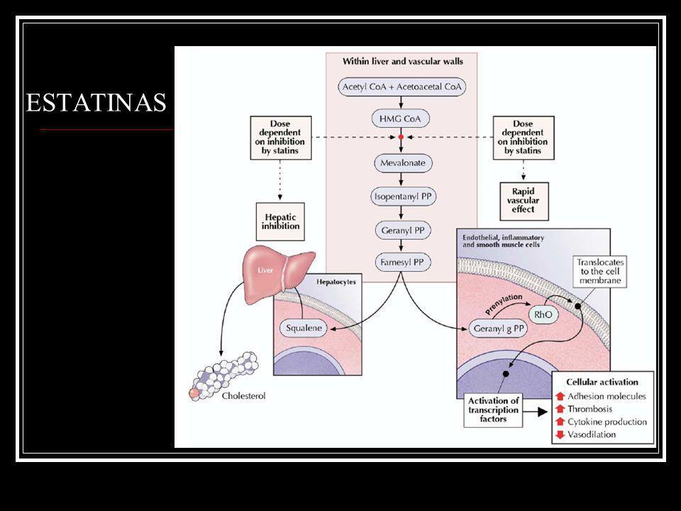 Fármacos Ezetimibe Farmacocinética: V.O Metabolismo hepático Eliminación biliar (compuesto activo) Circulación enterohepática Vida ½ 22 hrs.