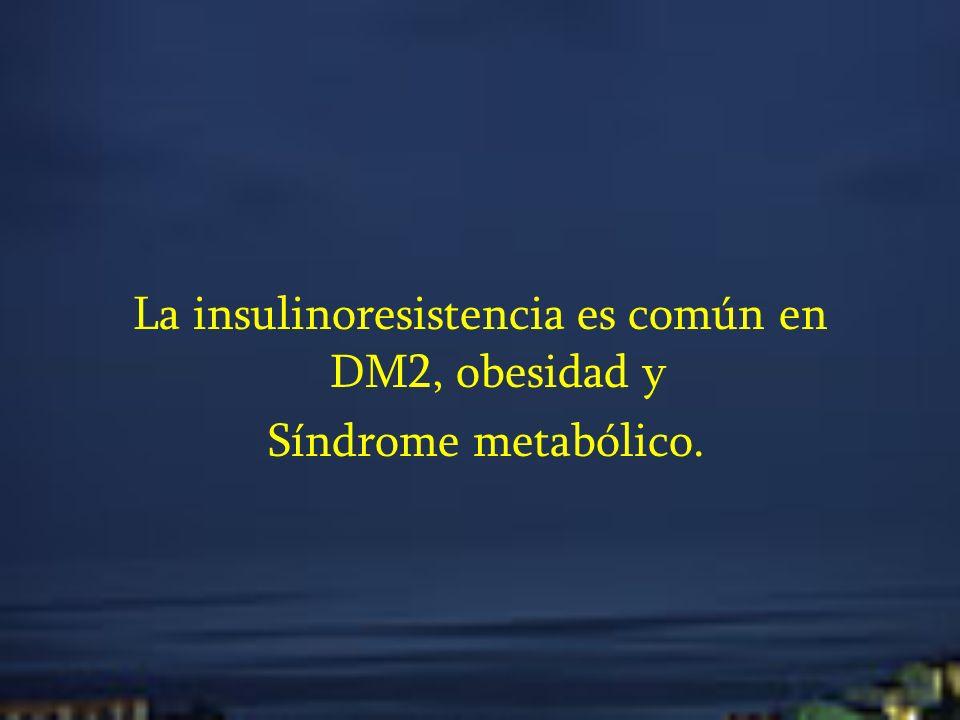 La insulinoresistencia es común en DM2, obesidad y Síndrome metabólico.