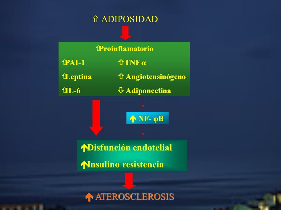 ADIPOSIDAD Proinflamatorio PAI-1 TNF Leptina Angiotensinógeno IL-6 Adiponectina NF- B Disfunción endotelial Insulino resistencia ATEROSCLEROSIS ATEROS
