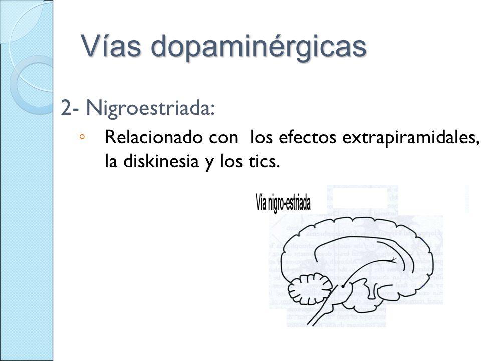 Vías dopaminérgicas 2- Nigroestriada: Relacionado con los efectos extrapiramidales, la diskinesia y los tics.
