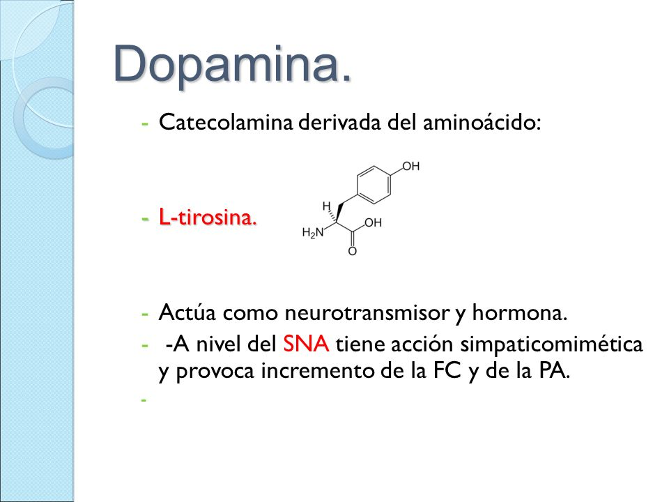 Dopamina. -Catecolamina derivada del aminoácido: -L-tirosina. -Actúa como neurotransmisor y hormona. - -A nivel del SNA tiene acción simpaticomimética