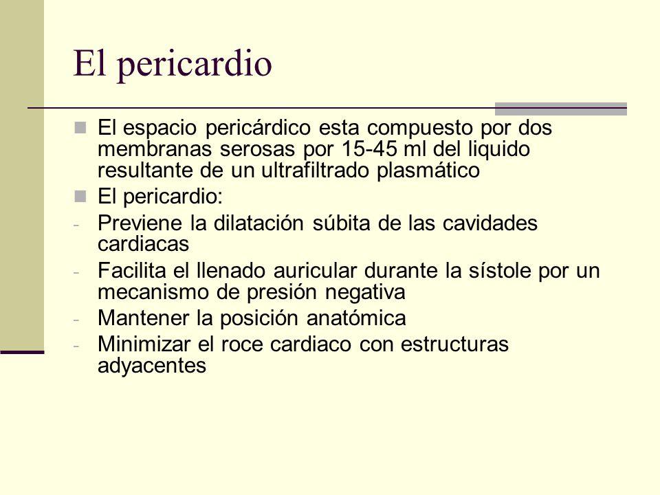 El pericardio El espacio pericárdico esta compuesto por dos membranas serosas por 15-45 ml del liquido resultante de un ultrafiltrado plasmático El pe