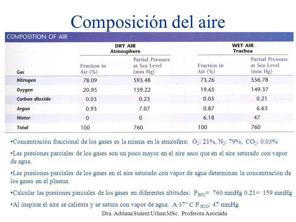 Composición del aire Concentración fraccional de los gases es la misma en la atmósfera: O 2 : 21%, N 2 : 79%, CO 2 : 0.03% Las presiones parciales de