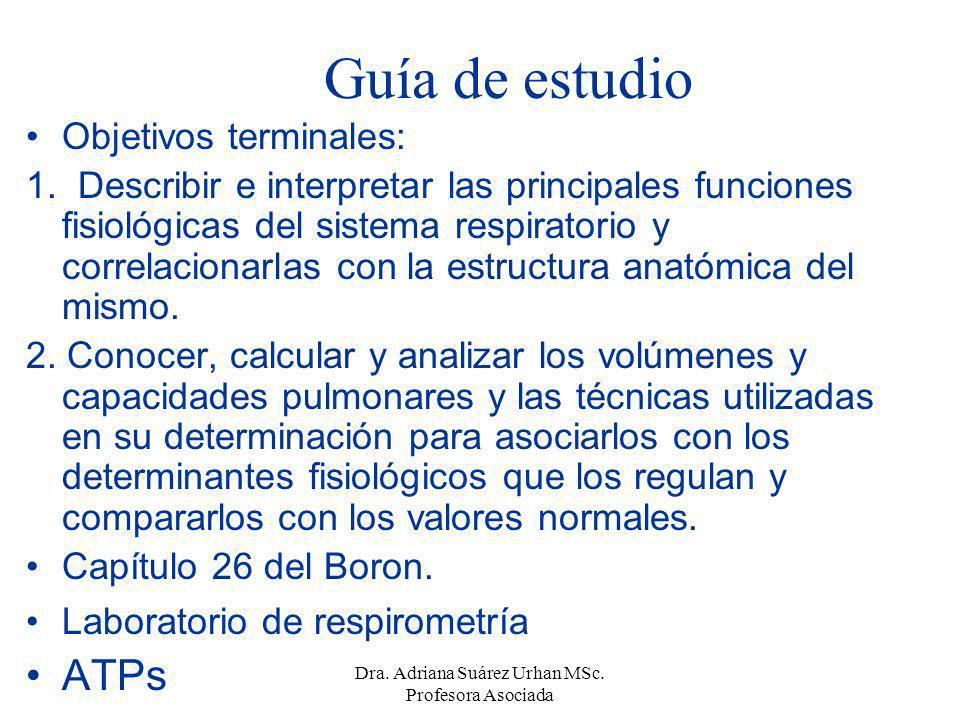 Guía de estudio Objetivos terminales: 1. Describir e interpretar las principales funciones fisiológicas del sistema respiratorio y correlacionarlas co