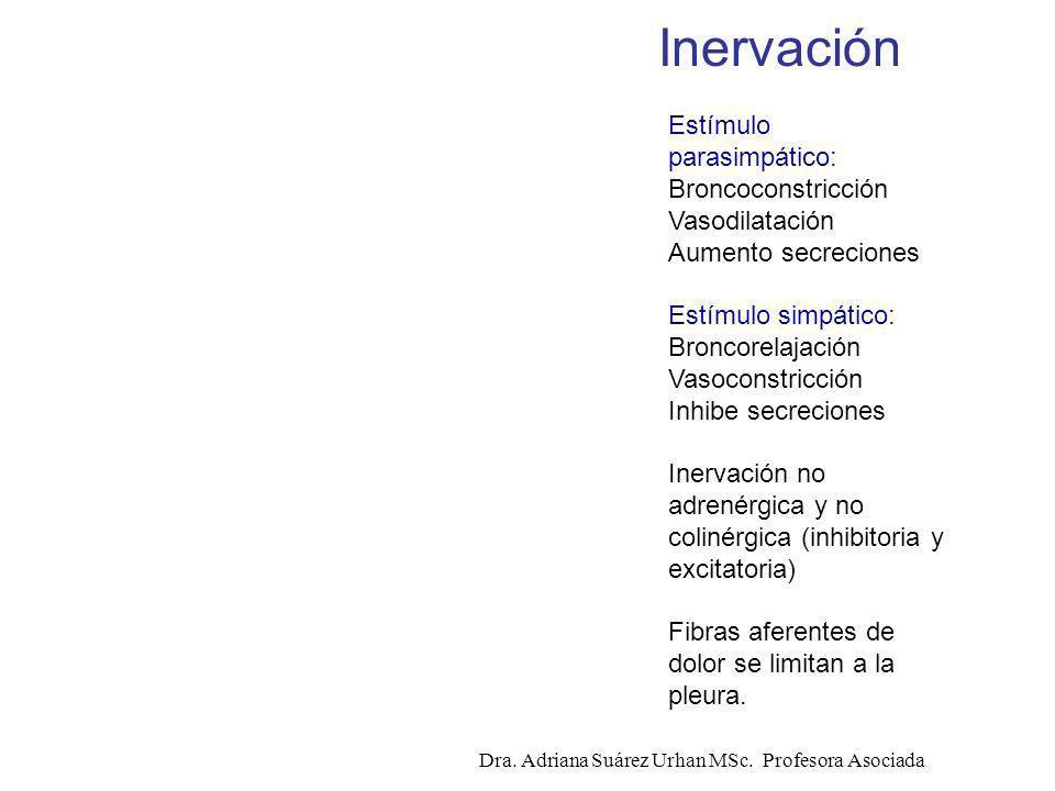 Estímulo parasimpático: Broncoconstricción Vasodilatación Aumento secreciones Estímulo simpático: Broncorelajación Vasoconstricción Inhibe secreciones