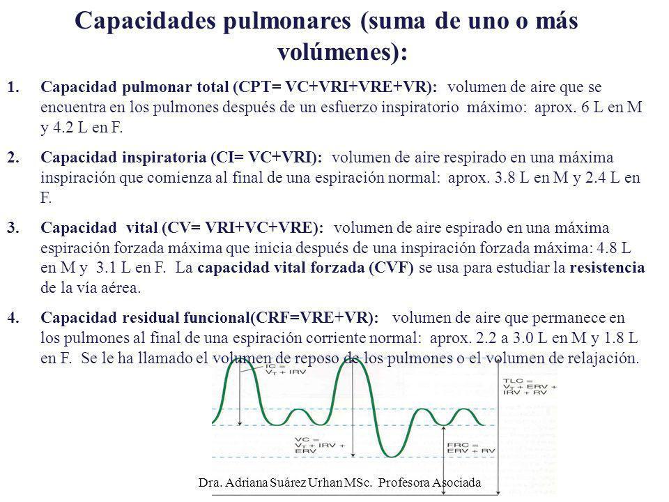 Capacidades pulmonares (suma de uno o más volúmenes): 1.Capacidad pulmonar total (CPT= VC+VRI+VRE+VR): volumen de aire que se encuentra en los pulmone