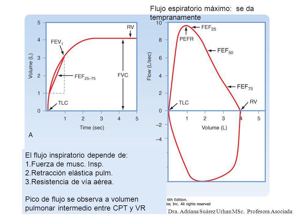 El flujo inspiratorio depende de: 1.Fuerza de musc. Insp. 2.Retracción elástica pulm. 3.Resistencia de vía aérea. Pico de flujo se observa a volumen p