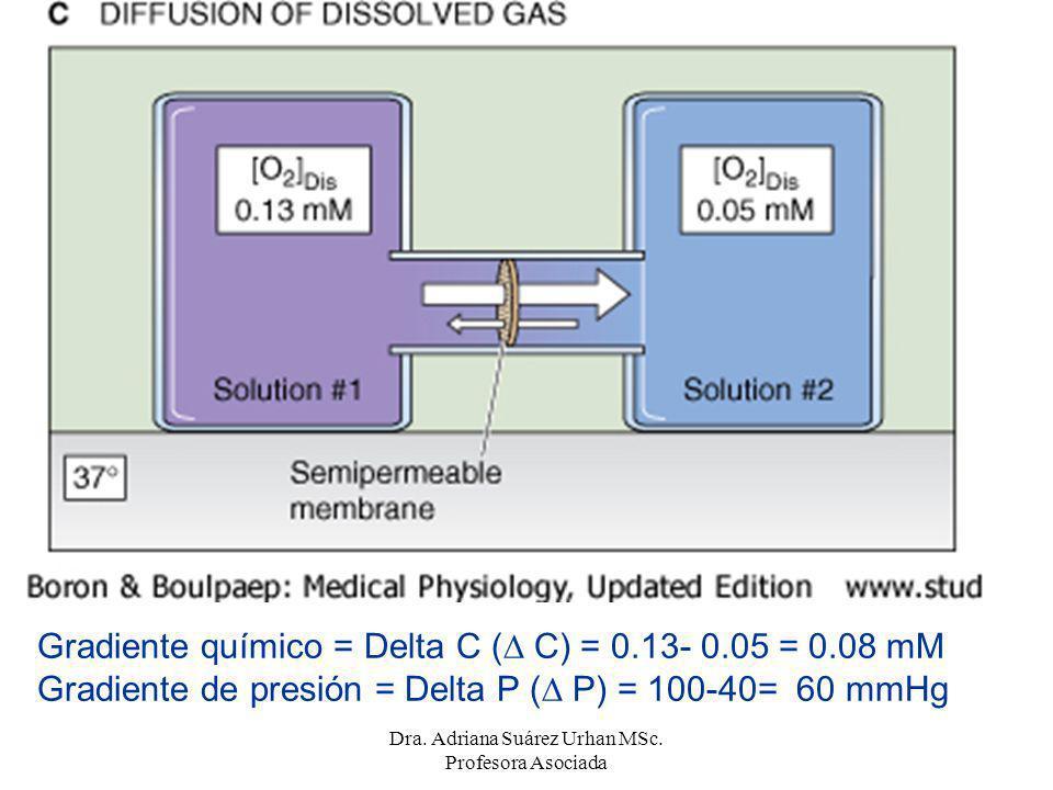 Gradiente químico = Delta C ( C) = 0.13- 0.05 = 0.08 mM Gradiente de presión = Delta P ( P) = 100-40= 60 mmHg Dra. Adriana Suárez Urhan MSc. Profesora