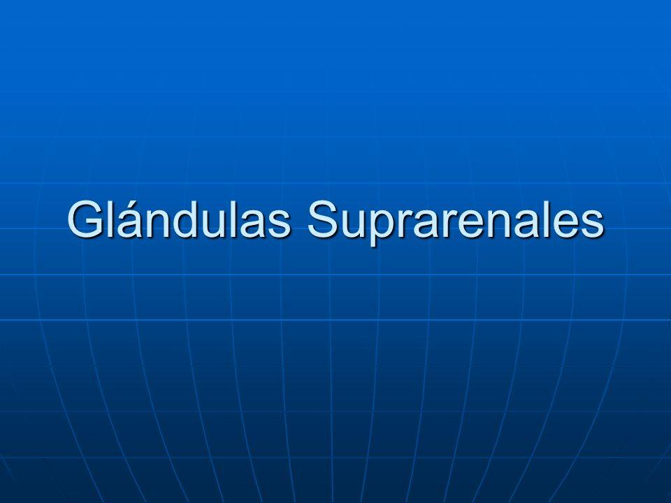 Insuficiencia adrenocortical Producción deficiente de glucocorticoides o mineralocorticoides por las suprarenales.