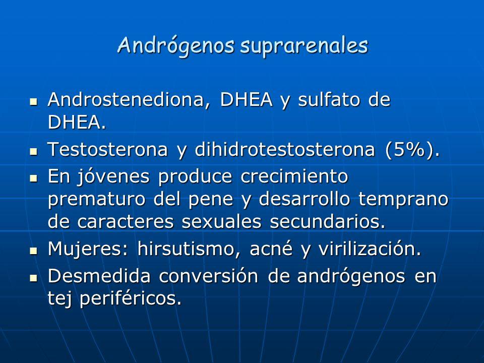 Andrógenos suprarenales Androstenediona, DHEA y sulfato de DHEA. Androstenediona, DHEA y sulfato de DHEA. Testosterona y dihidrotestosterona (5%). Tes