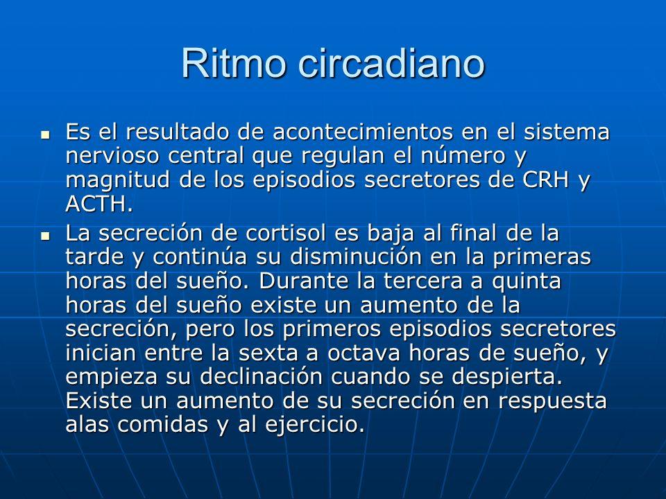 Ritmo circadiano Es el resultado de acontecimientos en el sistema nervioso central que regulan el número y magnitud de los episodios secretores de CRH