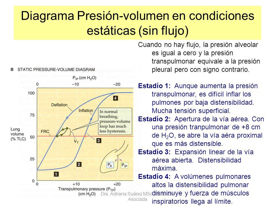 Diagrama Presión-volumen en condiciones estáticas (sin flujo) Cuando no hay flujo, la presión alveolar es igual a cero y la presión transpulmonar equi