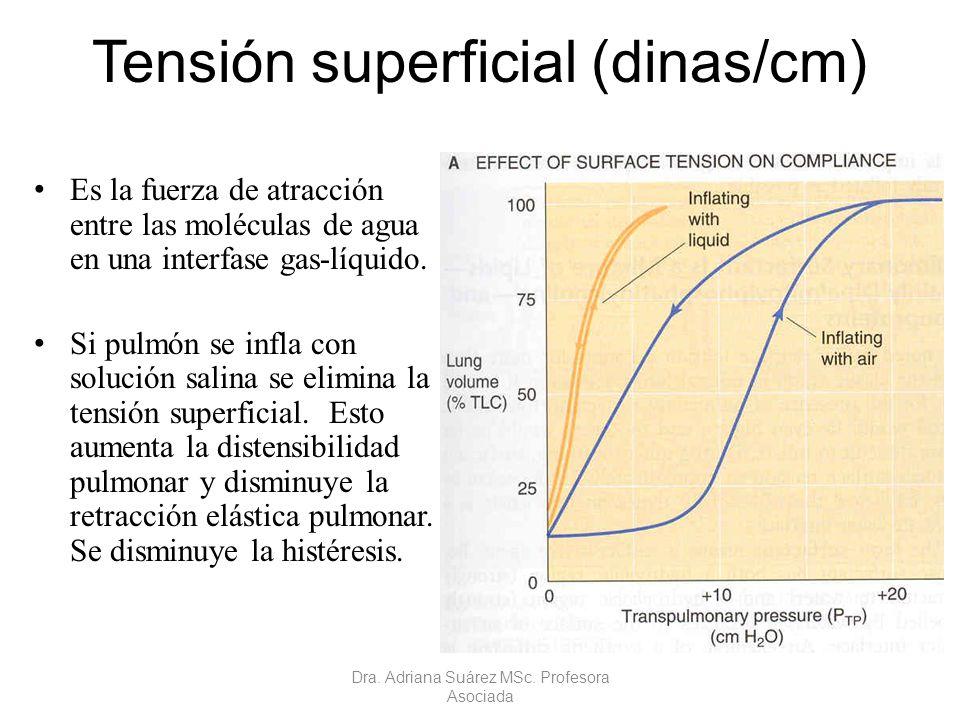 Tensión superficial (dinas/cm) Es la fuerza de atracción entre las moléculas de agua en una interfase gas-líquido. Si pulmón se infla con solución sal