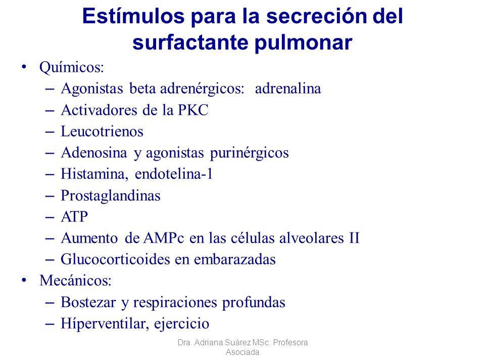 Estímulos para la secreción del surfactante pulmonar Químicos: – Agonistas beta adrenérgicos: adrenalina – Activadores de la PKC – Leucotrienos – Aden