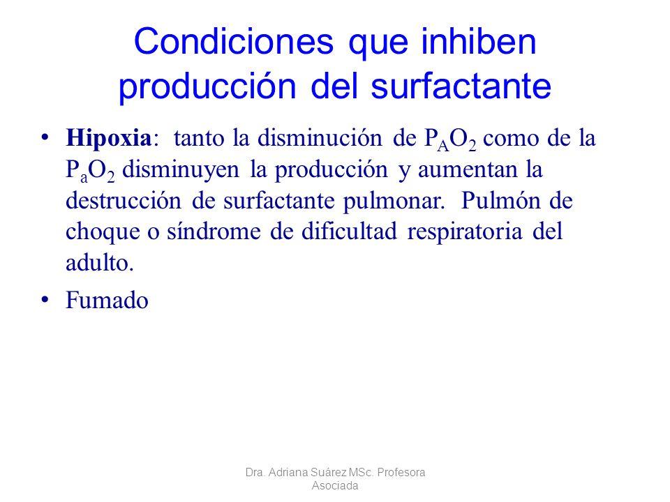 Condiciones que inhiben producción del surfactante Hipoxia: tanto la disminución de P A O 2 como de la P a O 2 disminuyen la producción y aumentan la