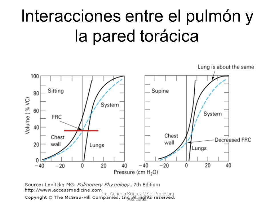 Interacciones entre el pulmón y la pared torácica Dra. Adriana Suárez MSc. Profesora Asociada