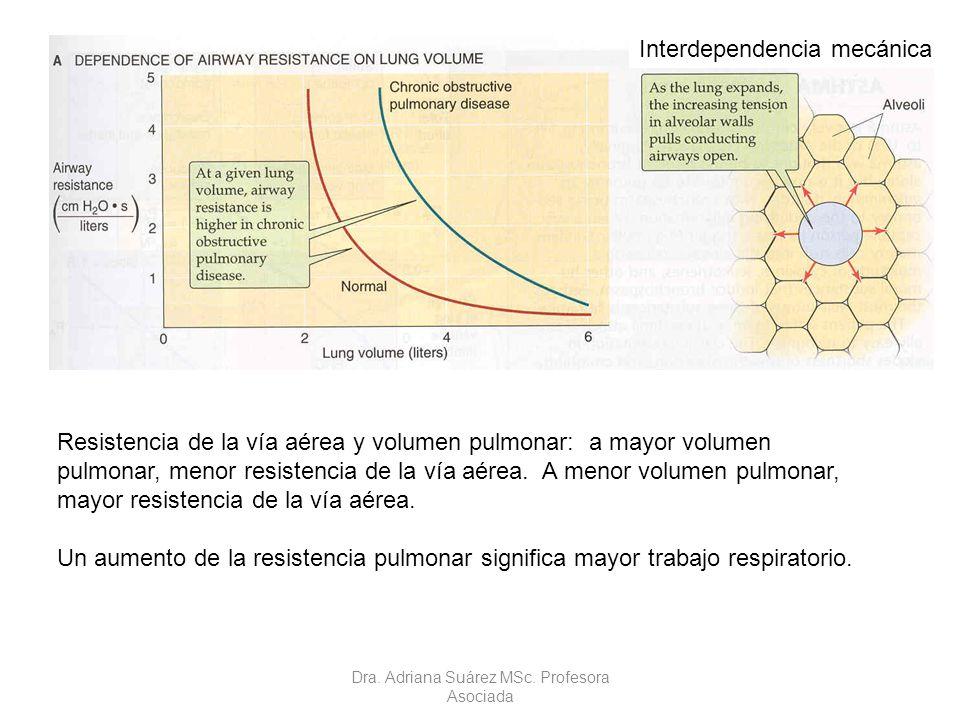 Resistencia de la vía aérea y volumen pulmonar: a mayor volumen pulmonar, menor resistencia de la vía aérea. A menor volumen pulmonar, mayor resistenc