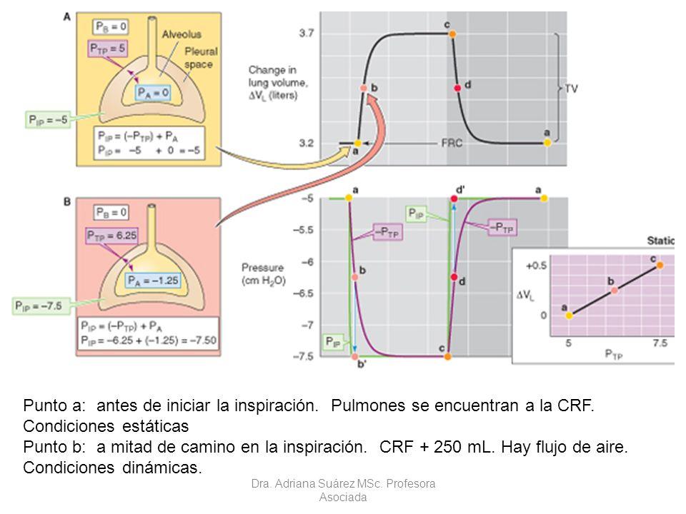 Punto a: antes de iniciar la inspiración. Pulmones se encuentran a la CRF. Condiciones estáticas Punto b: a mitad de camino en la inspiración. CRF + 2