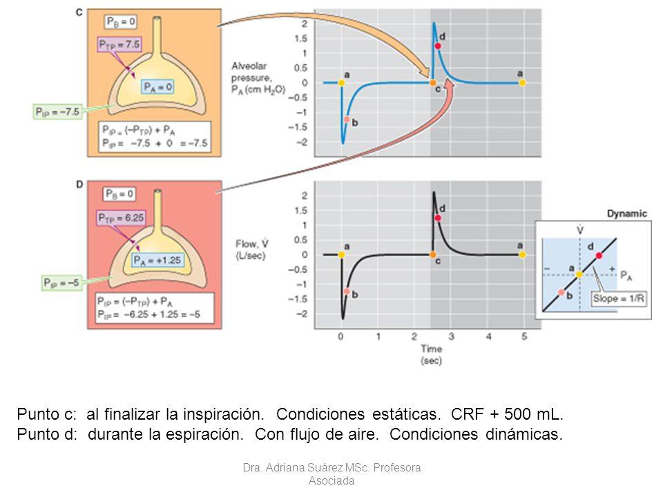 Punto c: al finalizar la inspiración. Condiciones estáticas. CRF + 500 mL. Punto d: durante la espiración. Con flujo de aire. Condiciones dinámicas. D