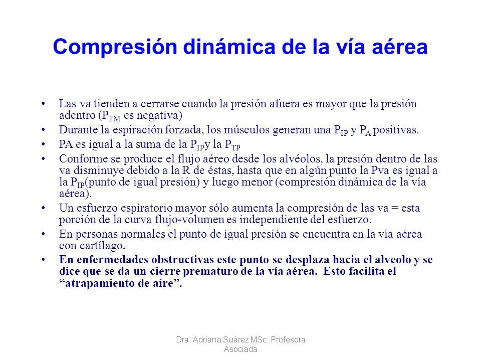Compresión dinámica de la vía aérea Las va tienden a cerrarse cuando la presión afuera es mayor que la presión adentro (P TM es negativa) Durante la e
