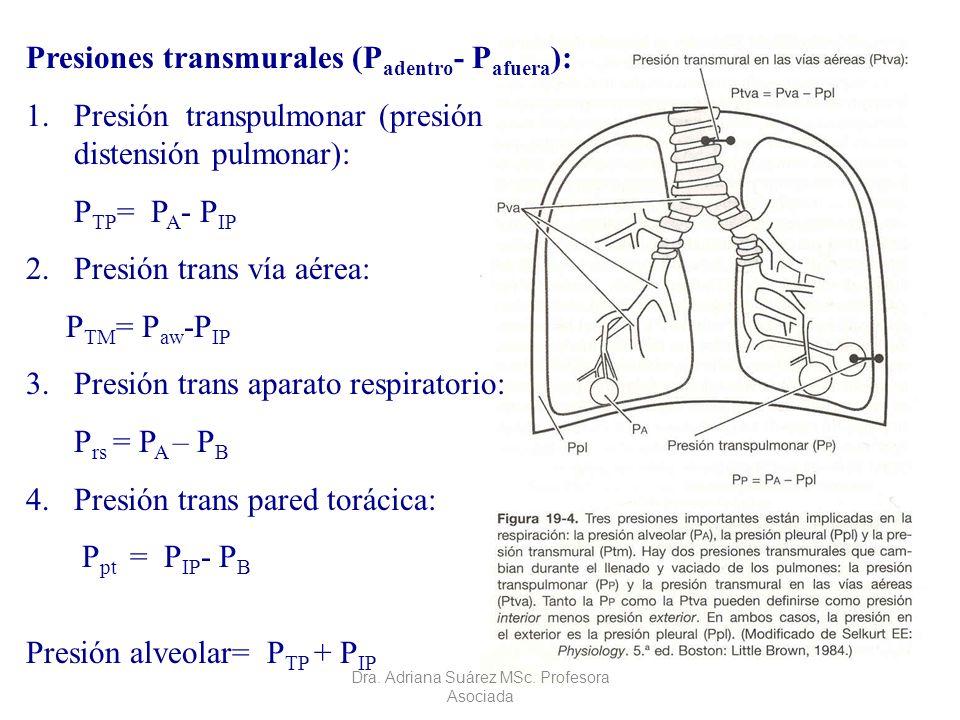 Presiones transmurales (P adentro - P afuera ): 1.Presión transpulmonar (presión distensión pulmonar): P TP = P A - P IP 2.Presión trans vía aérea: P