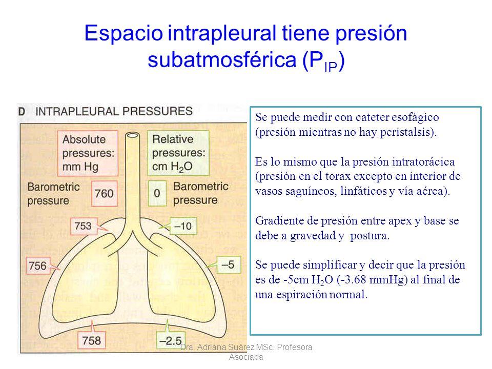 Espacio intrapleural tiene presión subatmosférica (P IP ) Se puede medir con cateter esofágico (presión mientras no hay peristalsis). Es lo mismo que