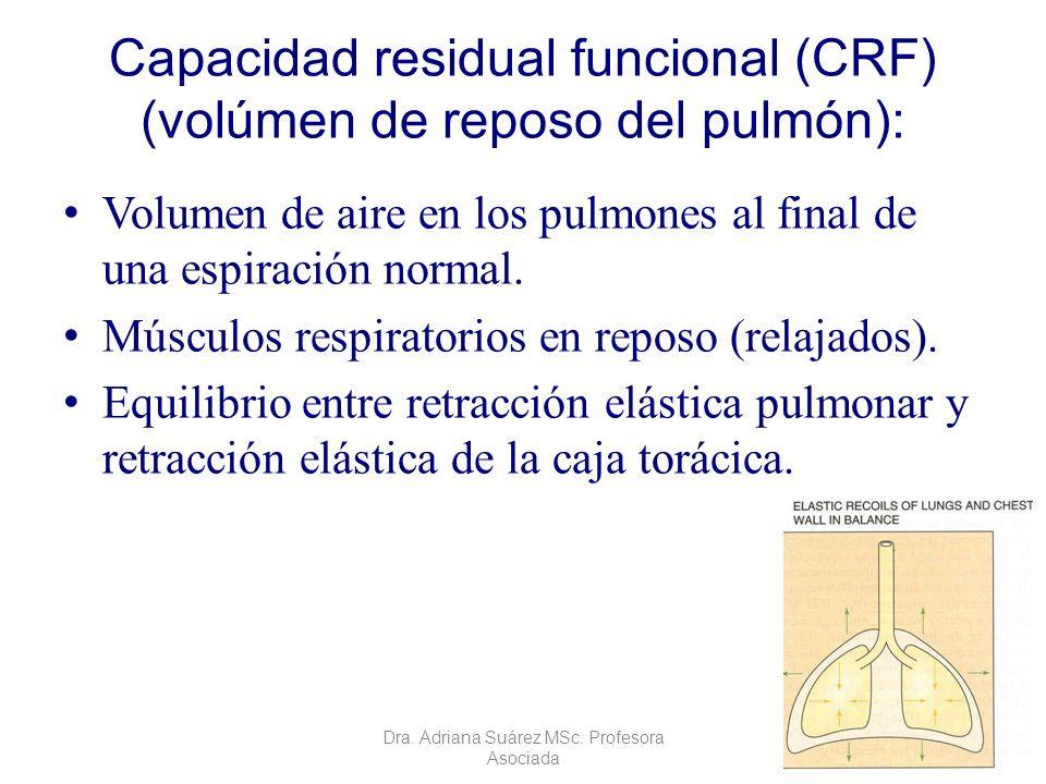 Capacidad residual funcional (CRF) (volúmen de reposo del pulmón): Volumen de aire en los pulmones al final de una espiración normal. Músculos respira