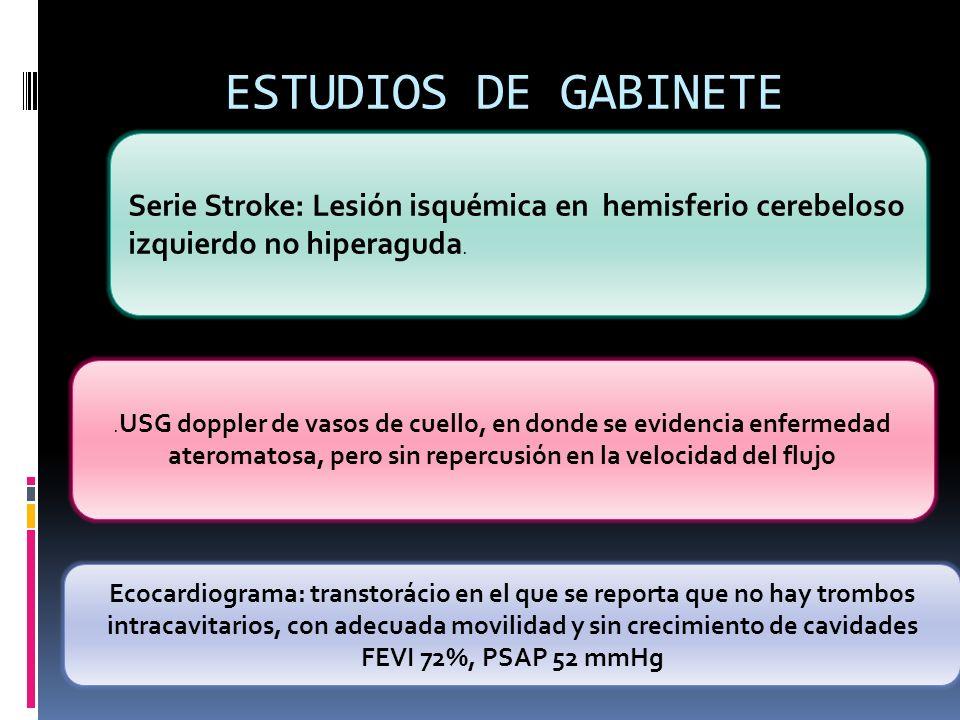 ESTUDIOS DE GABINETE.