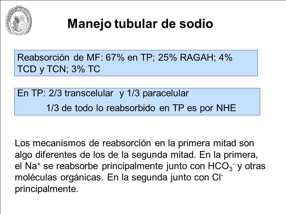 Proteínas: escasa filtración, [Prot] F = 4 a 20 mg/L.