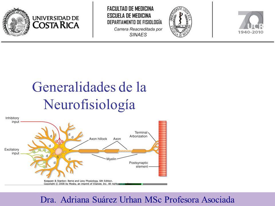 Generalidades de la Neurofisiología Dra. Adriana Suárez Urhan MSc Profesora Asociada