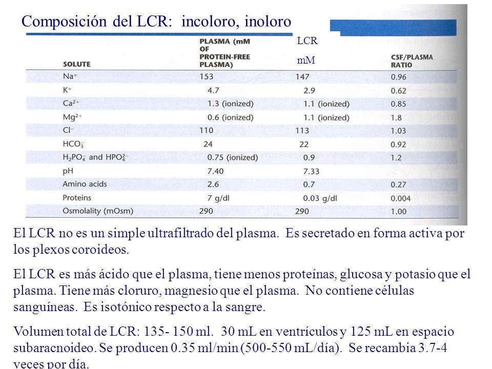 Composición del LCR: incoloro, inoloro LCR mM El LCR no es un simple ultrafiltrado del plasma. Es secretado en forma activa por los plexos coroideos.