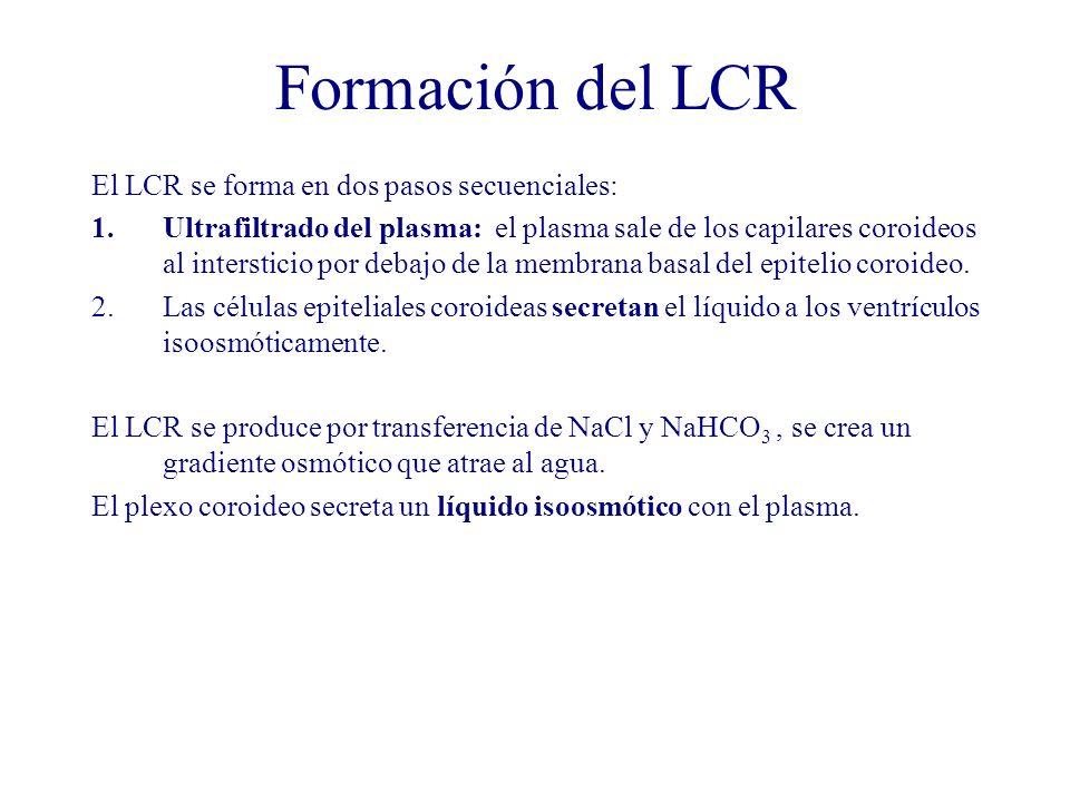 Formación del LCR El LCR se forma en dos pasos secuenciales: 1.Ultrafiltrado del plasma: el plasma sale de los capilares coroideos al intersticio por