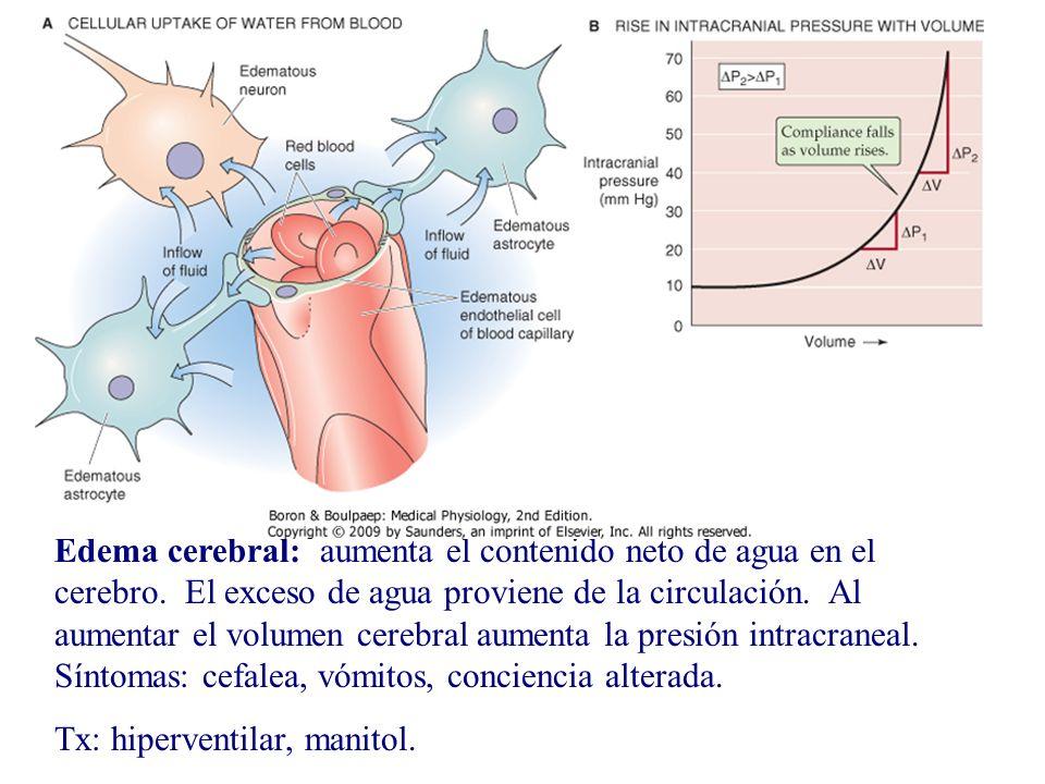 Edema cerebral: aumenta el contenido neto de agua en el cerebro. El exceso de agua proviene de la circulación. Al aumentar el volumen cerebral aumenta