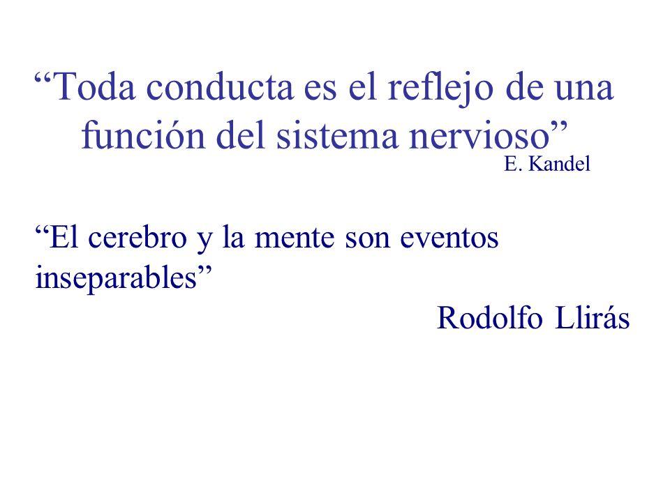 Toda conducta es el reflejo de una función del sistema nervioso E. Kandel El cerebro y la mente son eventos inseparables Rodolfo Llirás
