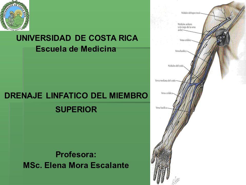 El drenaje linfático del miembro superior está asegurado por dos redes: El drenaje linfático del miembro superior está asegurado por dos redes: Una red superficial y Una red profunda.