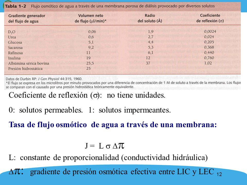 12 Coeficiente de reflexión ( ): no tiene unidades. 0: solutos permeables. 1: solutos impermeantes. Tasa de flujo osmótico de agua a través de una mem