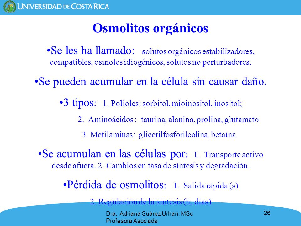 26 Osmolitos orgánicos Se les ha llamado: solutos orgánicos estabilizadores, compatibles, osmoles idiogénicos, solutos no perturbadores. Se pueden acu
