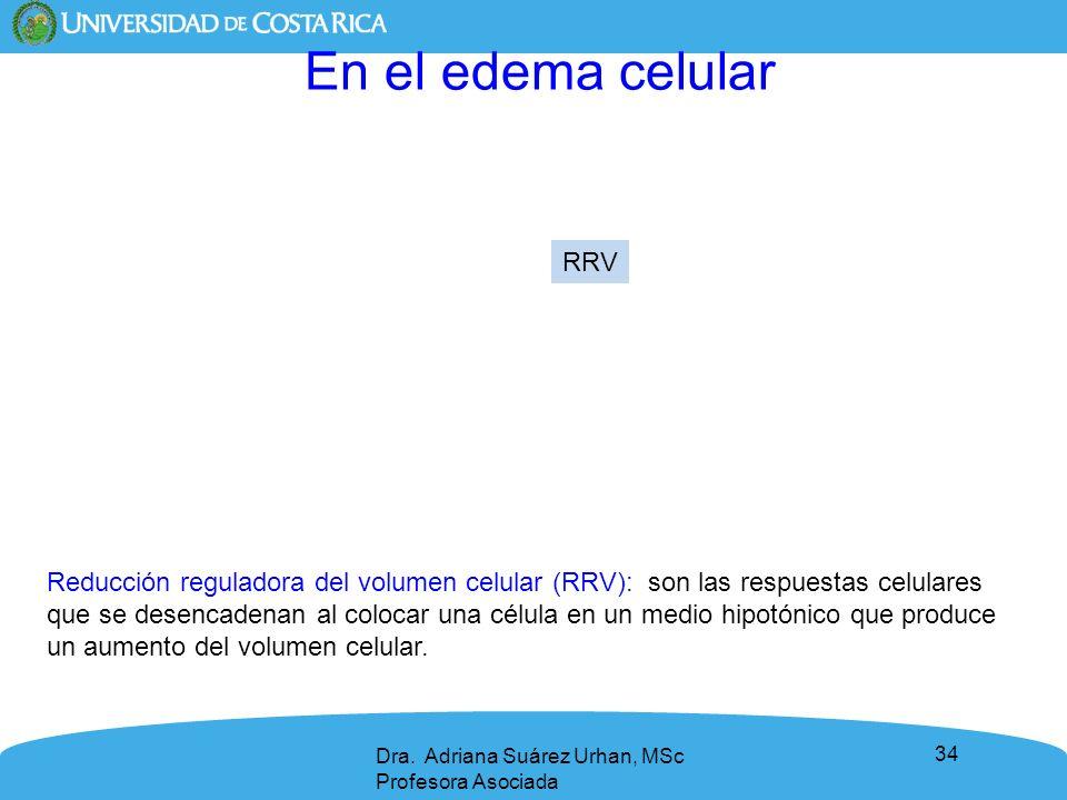 34 Reducción reguladora del volumen celular (RRV): son las respuestas celulares que se desencadenan al colocar una célula en un medio hipotónico que p
