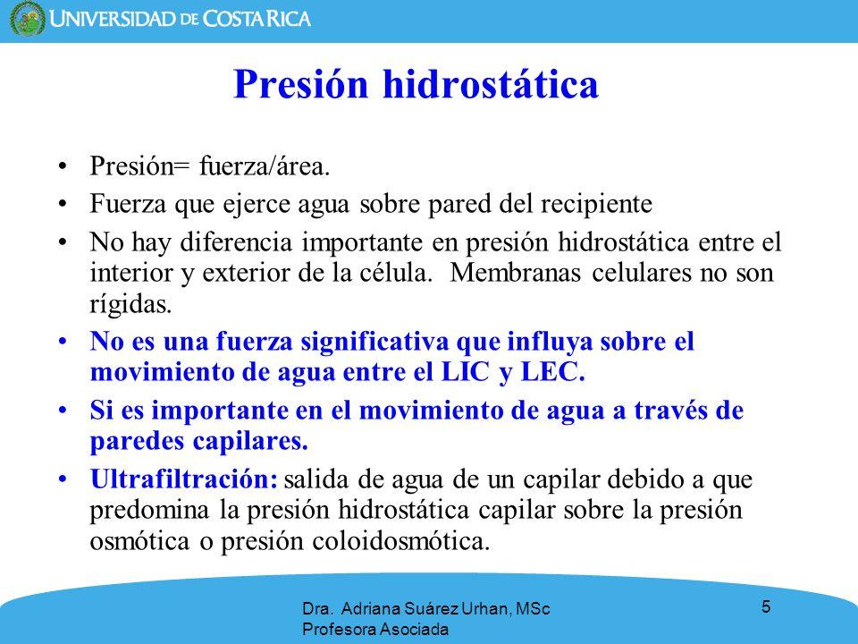 5 Presión hidrostática Presión= fuerza/área. Fuerza que ejerce agua sobre pared del recipiente No hay diferencia importante en presión hidrostática en